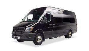 8-passenger-luxury-van